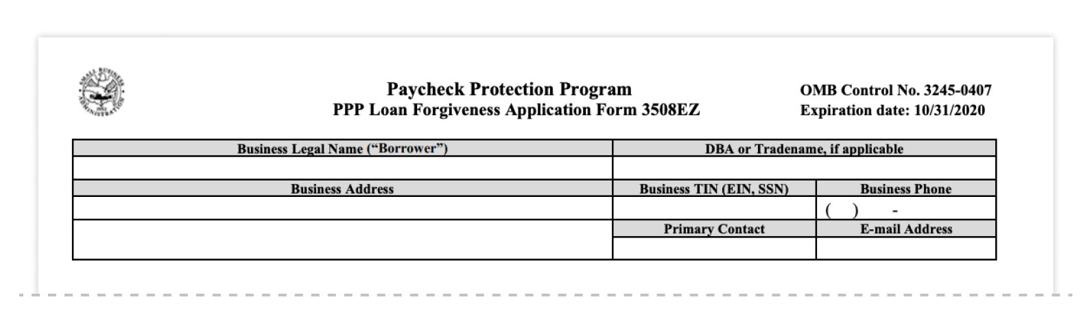 ppp loan forgiveness application form 3508ez business information
