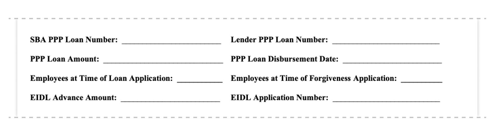 ppp loan forgiveness application form 3508ez loan information